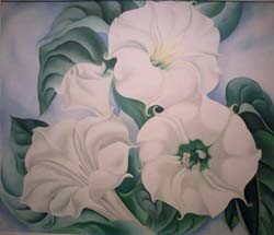 O'Keeffe's Jimson Weed sold for $44.4 million in 2014.